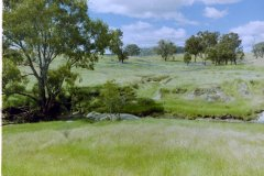 H - 1996-12 Marymamma Creek East