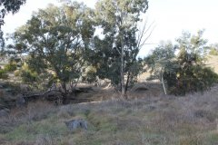 G - 2017-08 - Marymamma Creek East