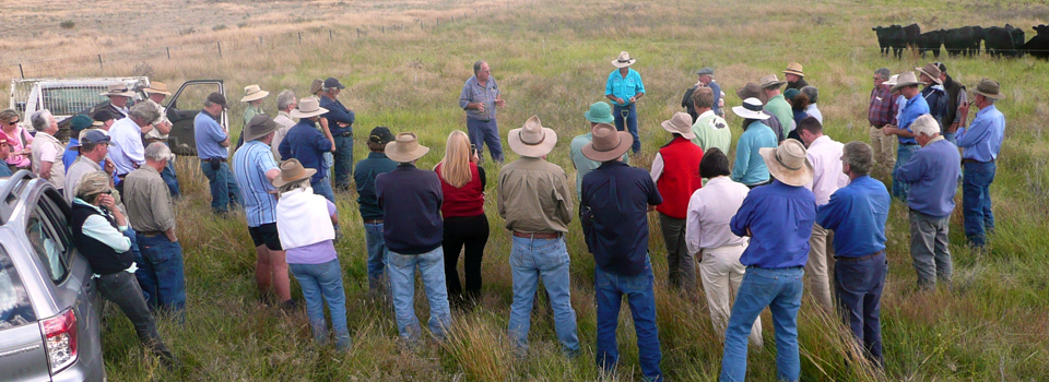 Grazing Management Field Day.jpg